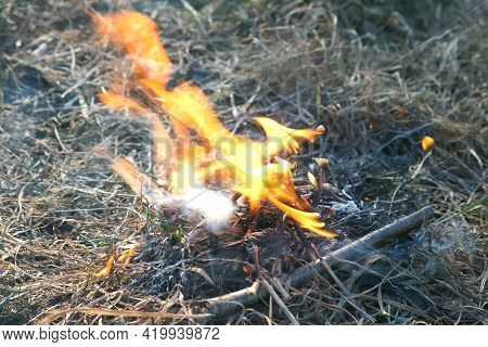 Small Bonfire From Sticks And Dry Grass Is Burning On Nature. Campfire Early Spring. Camping And Hik