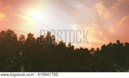 3D render of a tree landscape against a sunset sky