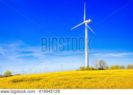 Rape Field With A Wind Turbine Against A Blue Sky