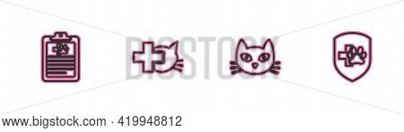 Set Line Clinical Record Pet, Cat, Veterinary Clinic And Animal Health Insurance Icon. Vector