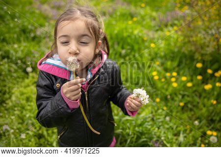 Funny Little Girl Blowing On A Dandelion Flower Among Fresh Spring Grass.