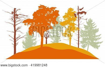 Autumn Forest, Silhouette Of Bare Tree, Trees With Leaves And Fir Trees. Beautiful Nature, Landscape