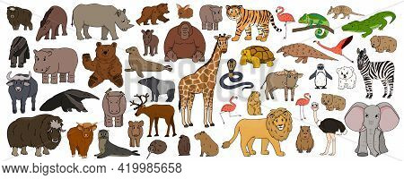 Set Of Cartoon Isolated Outline Savannah African American Forest Animals. Vector Tiger Lion Rhinocer
