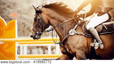 Equestrian Sport. The Leg Of The Rider In The Stirrup, Riding On A Horse. Dressage Of Horses In The