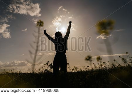Backlighting Of A Young Woman In A Flower Field