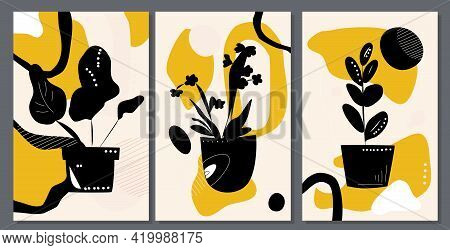 Different Domestic Plants On Abstract Background.mid Century Art. Grow And Cultivate Flowers In Pot.
