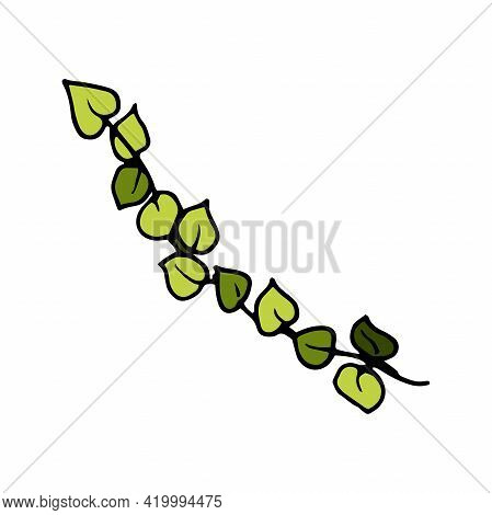 Vector Ewaving Tree Branch With Green Leaves. Clipart Twig Hand Drawn Doodle Style Design Element Po