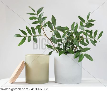 Eucaliptus Leaves In A Concrete Flower Pot And Scented Soy Candle. Home Fragrances, Perfumed Candle