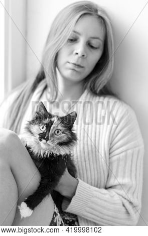 Young Beautiful Three-color Orange-black-and-white Long-hair Young Cat With Her Mistress Young Girl.