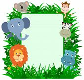 Jungle Animals Frame with copy-space.  Lion, Elephant, Koala Bear, Monkey, Zebra & Hippo. poster
