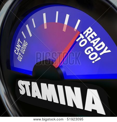 The word Stamina on a fuel gauge measuring your drive, power, energy or passion level for rising to complete a task or express your desire