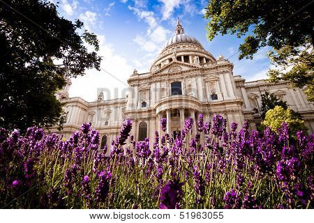 St Paul's cathedral, London, in the spring