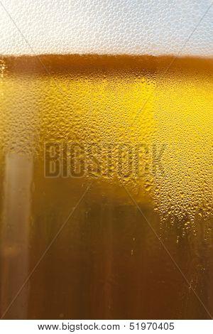 Fresh Golden Draft Beer Detail