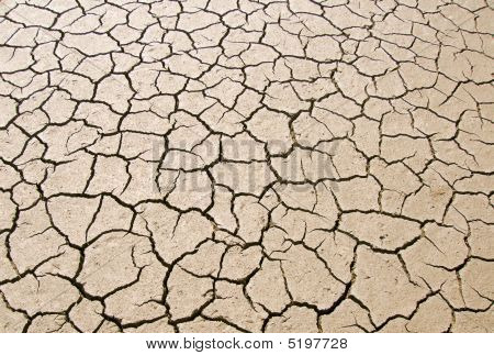 Dry Parched Earth