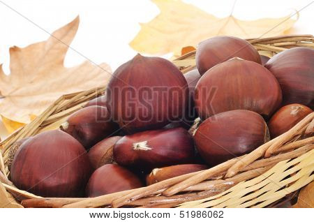 a pile of chestnuts on a basket and autumn leaves in the background