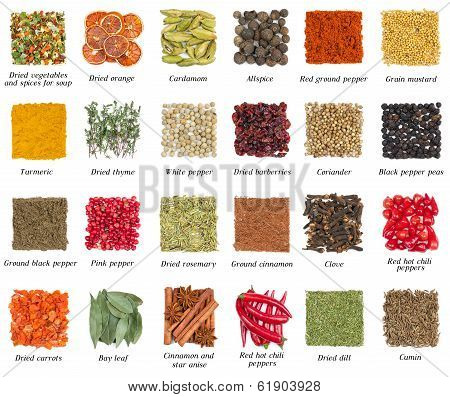 Set Of Spices Isolated On White