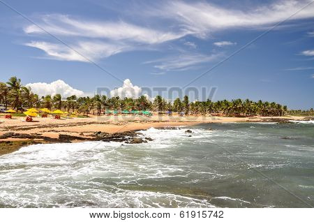 Praia Do Forte, Salvador De Bahia (brazil)