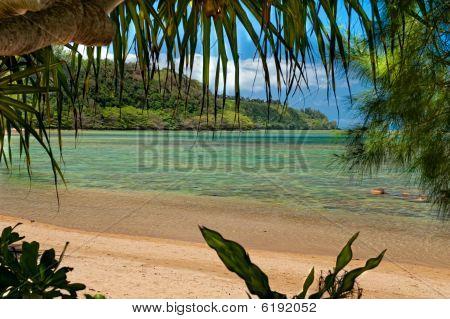 beach scape at Anini Beach on the island of Kauai, Hawaii poster