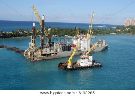 Sand Digger In Nassau