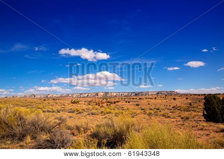 Arizona desert on US 89 in a sunny day USA poster