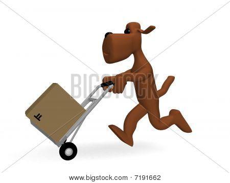 dog parcels
