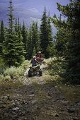 High mountain trail in the alpines with two teens riding atvs away from the camera poster