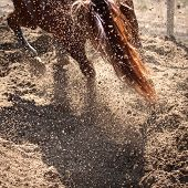 Exploding sand and dust behind horse hooves poster