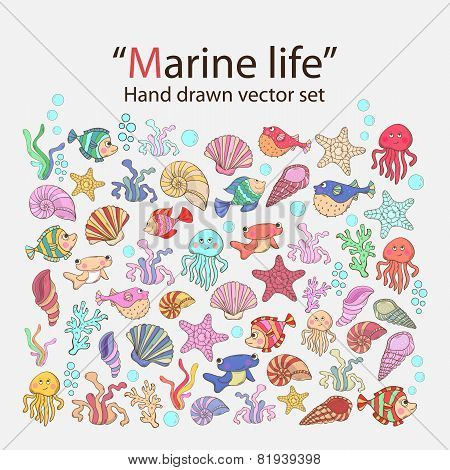 Vector marine life