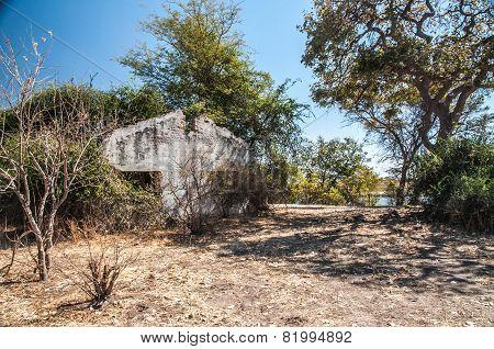 Bush Ruins