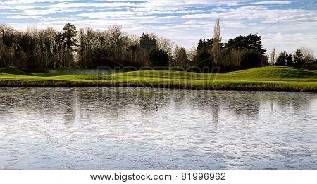 Bird On Frozen Pond