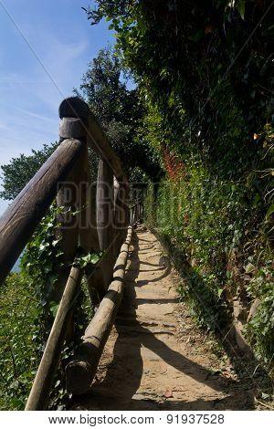 Narrow Walking Trails Of Cinque Terre Italy