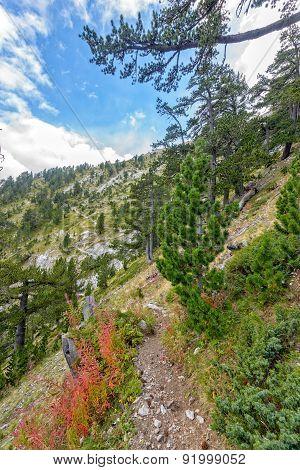 Trekking Path In Mountains In Greece