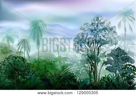 Misty wet wilderness tropical rainforest. Vector landscape