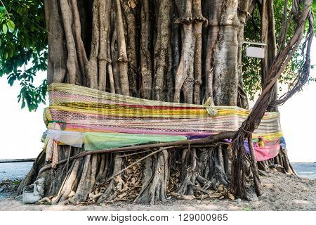 Seven colors fabrics tie on big tree. This is showing respect of local god/ghost. Religious beliefs of Thai people.