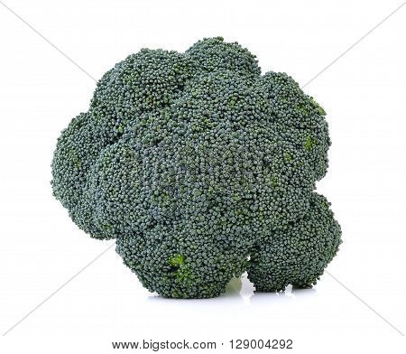 A Broccoli are on the white background
