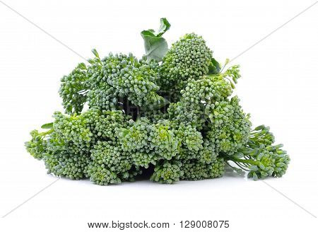 A Broccolis are on the white background