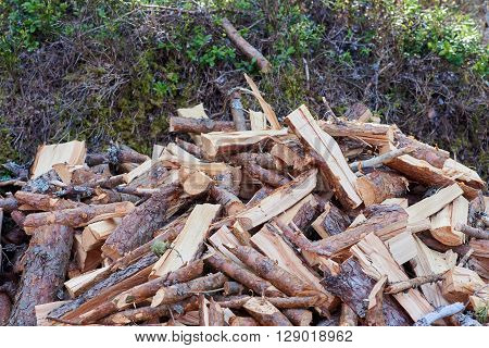 Chopped up woodpile closeup in the forest.