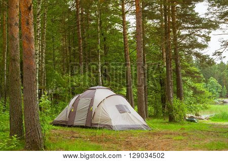 Summer outdoor recreation Scandinavian vacation. Camping tent in a wooded campsite among pine trees. Finnish Gulf. Area for camp in woods. Hamina Finland Suomi