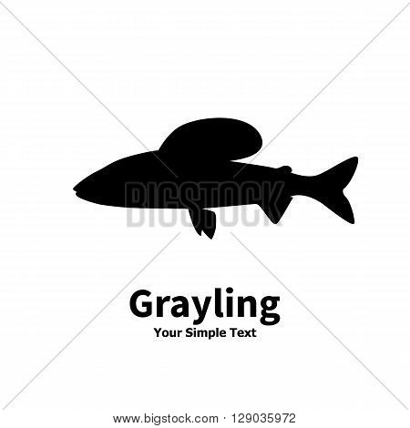 Vector illustration silhouette of grayling fish. Isolated on white background.