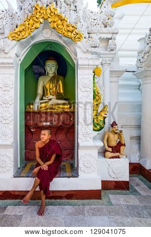 Yangon Myanmar - January 9 2012: A monk seated in front of a Buddha shrine in the Swedagon Pagoda.