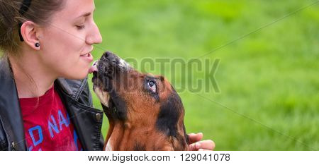 Young woman with an affectionate one year old Basset hound (Canis lupus familiaris) in the yard of a hobby farm.  Girl loves her dog, wet kisses from her one year old Basset hound.