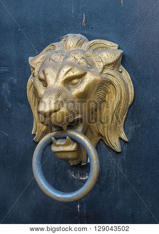 Golden Lion head doorknocker on a rusty metal door