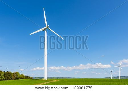 wind turbine of a small wind farm on a green field on a sunny day
