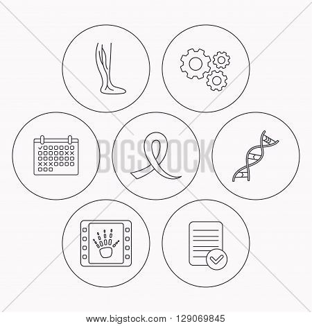 Phlebology, DNA and X-ray icons. Oncology awareness ribbon linear sign. Check file, calendar and cogwheel icons. Vector