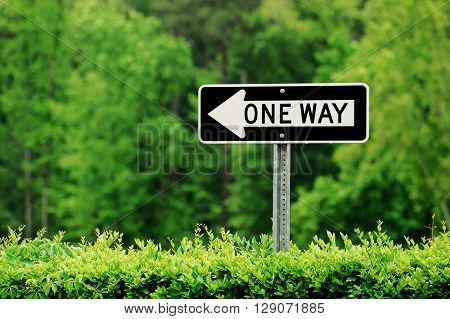 one way sign against green tree background