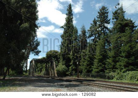 Caltrain Tracks & Trestle