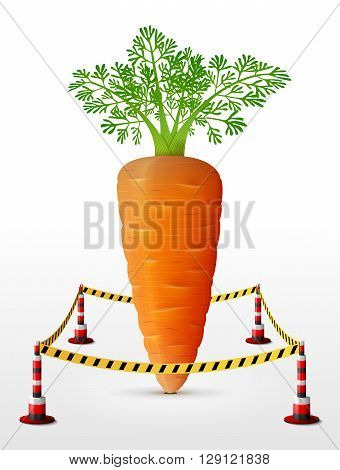 poster of Carrot tuber located in restricted area. Carrot with leaves surrounded barrier tape. Qualitative vector illustration for agriculture, vegetables, cooking, gastronomy, olericulture, etc