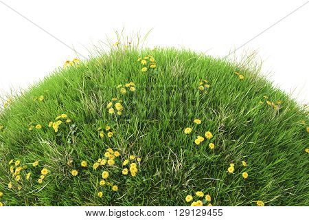 Green grass hill. Isolated on white. 3D illustration.