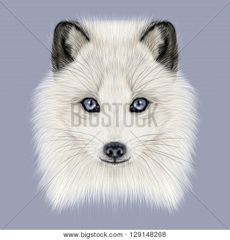 Illustrated Portrait of Arctic fox. Cute white fluffy face of Polar Fox on dark blue background.