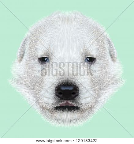 Illustrated Portrait of White Sheperd puppy. Cute white fluffy face of domestic dog on blue background